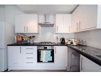 Luxury 3 bedroom Apartment in Forest Gate Dss acceptable with guarantor