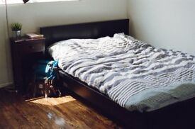 Zombie Free Area! Wimbledon Double Room! Freshly Renovated! Call us for more Info!