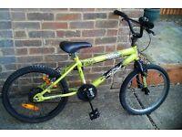 Kids BXM Bike