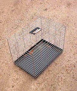 Metal pet carrier/transporter