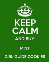 MINT Girl Guide Cookies