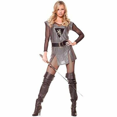 Women's Silver Lady Knight Medieval Lancelot Couples Halloween Costume Dress L (Women Couple Costumes)