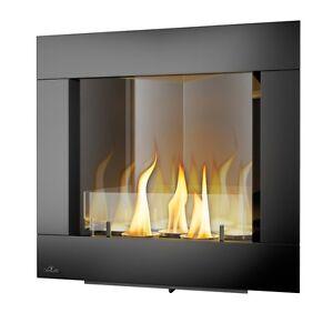Napoleon Ventless Ethanol Black Finish Corner Fireplace
