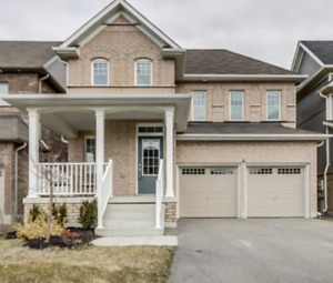 26 Sumersford Drive, Bowmanville, ON For Rent 2100$