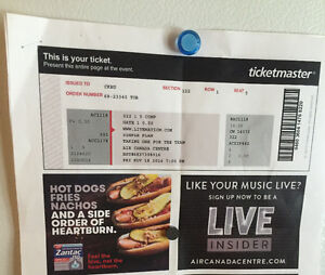 2 simple plan tickets