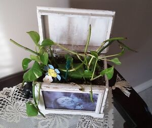 SOLID WOODEN PHOTO BOX PLANTER WITH LID London Ontario image 1