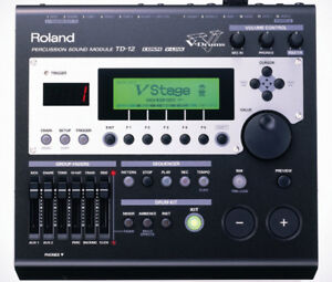 I will buy the Roland td-12 module.