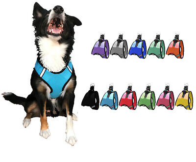 Nylon Mesh Easy Step-In Quick-Release Padded Soft Puppy Pet Dog - Padded Nylon Harness