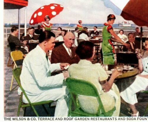 1933 Century Of Progress Postcard The Wilson & Co. Roof Garden Overlooking Lake