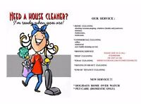 IT'S TIME TO SHINE LTD commercial and domestic cleaning service