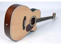 Freshman Apollo 1OC Acoustic Guitar, Fishman ION Electrics, With Freshman Quality Padded Gig Bag