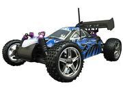 Nitro RC Car Shell