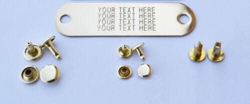 warner-brand-brass-tag-name-plate-for-dog-collar-3-set-of-rivet-pet-id-tag.JPG