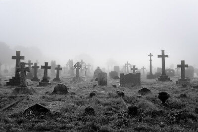 7X5FT Horror Graveyard Vinyl Photography Studio Photo Background Backdrop Props (Graveyard Backdrop)