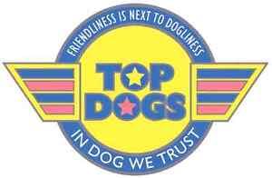 Eastern Suburbs Dog Walking Business including van. Sydney City Inner Sydney Preview