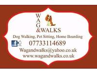 Licenced home boarding and pet visits