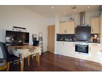 Superb Modern Conversion flat. Quiet street near Tube. Perfect for professional couple. SW17