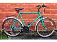 Retro Raleigh Ascender Mountain Bike