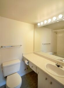 1 bedroom special! In Walking Distance to Southgate Mall... Edmonton Edmonton Area image 14