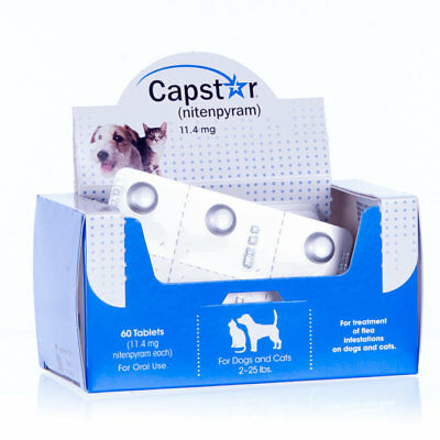 Capstar Oral Flea Treatment for Dogs & Cats 2-25 lbs - 60ct Pack