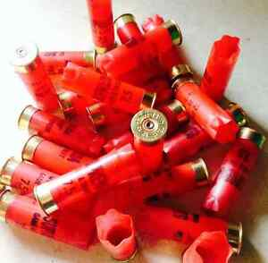 Looking for empty used shotgun shell...used bullet casings....