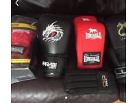 Various sparring equipment