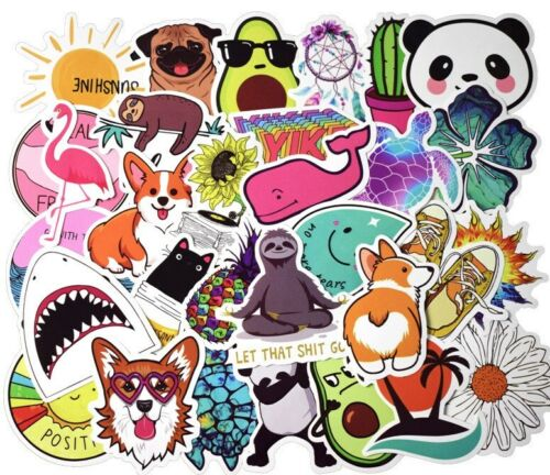 50 VSCO Stickers for Hydro Flask Laptop Girl Decals Skateboard Suitcase Sticker