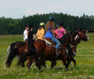 Intermediate Level Summer Horsecamp