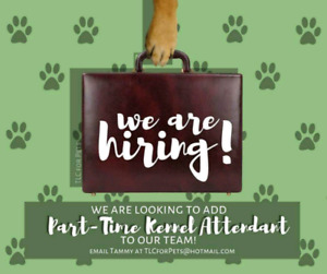 Kennel Assistant needed