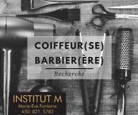 Coiffeurs (euses) barbiers (ières)