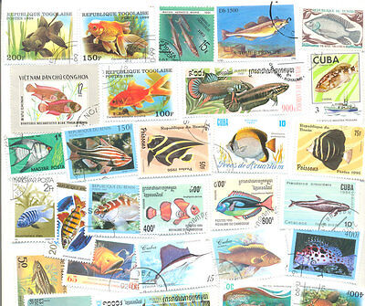 Fish collection 300 all different mainly large-medium size stamps