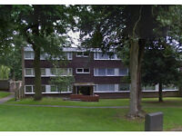 Lovely 2 bed flat available 13th August. NO DSS. Great location, £695pcm