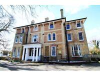 1 bedroom house in Bramley Hill, Croydon , CR2 (1 bed) (#1159780)