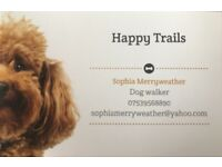 Dog Walker Ringwood and surrounding areas