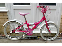 Bumper Sparkle children's bike: 20in wheels, mudguards, V-brakes, PWO. Ages 5-8