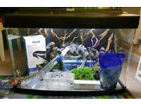 Fishpod 120 litre aquarium