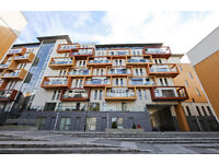 This wonderful new build 1 bedroom apartment is available furnished from June.