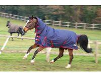 Medium Weight Horse Rug