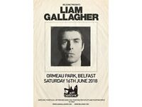 1X BELSONIC TICKET LIAM GALLAGHER 16TH JUNE