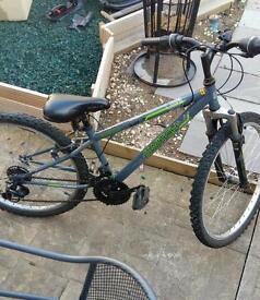 Switch apollo mountain bike