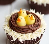 Last minute Easter cupcakes and cakes 226-777-3308