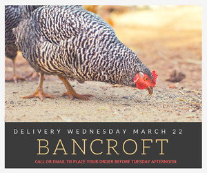 NON-GMO &SOY FREE LIVESTOCK FEEDS, DELIVERY HERE WEDNESDAY