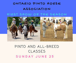 PINTO AND ALL BREED SHOW- JUNE 25