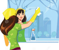 Window Cleaning - Home - Town or Rural