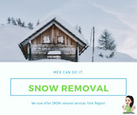 Snow Removal Richmond Hill & Markham 647.228.0228 MEX