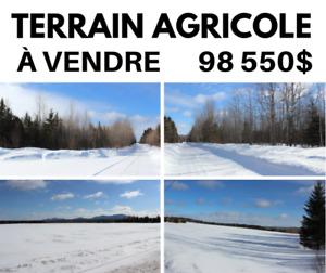 Terrain 65,7 acres agricole Stornoway