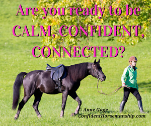 In 1 Day You Can Be the Confident Rider You Dream of Being (and