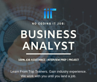 Business Analyst Course - 2 Domains + Job Assistance + Project!