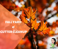 Fall Yard, Gutter Cleanup or Rubbish Removal Richmond Hill
