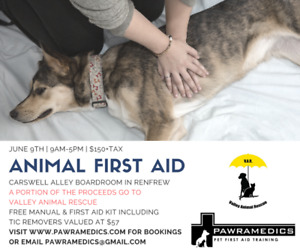 Dog and Cat First Aid and CPR training course